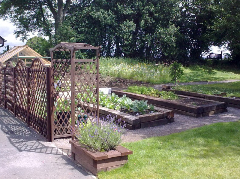 Raised Beds and Trellis