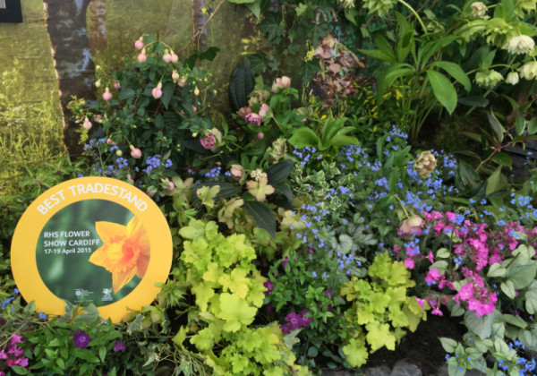 EvergreenWales RHS 2015 Award