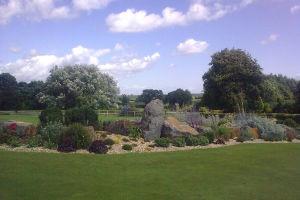 rockery garden planting